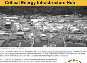Report on Critical Energy Infrastructure Hub